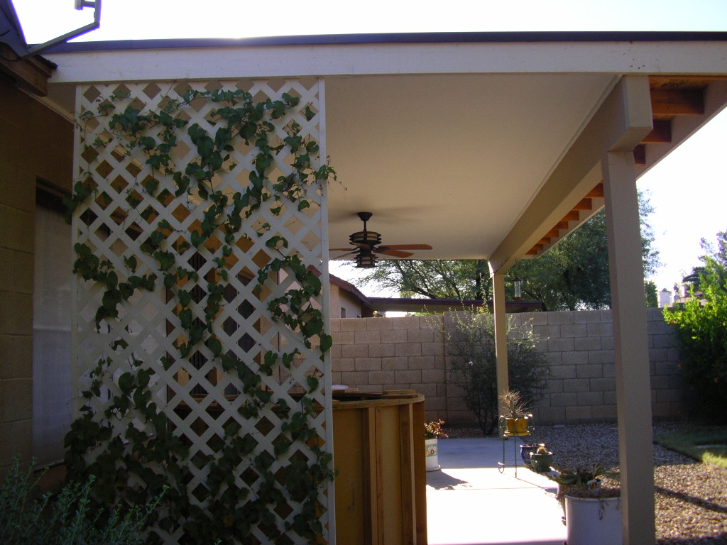 Wood patio cover- Phoenix, AZ.
